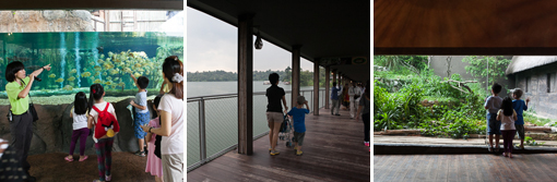 20140917-Singapore-2-5