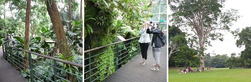 20140917-Singapore_p6-3